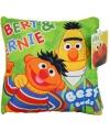 Bert en Ernie kussentje 18 cm