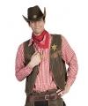Geruite cowboy overhemden in het rood