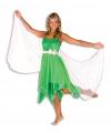 Carnavalskostuum Elfen jurk voor dames