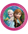 Thema Disney Frozen wegwerp borden 8 stuks