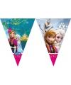 Vlaggetjeslijn met plaatjes van Frozen 2 meter