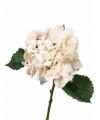 Hortensia wit op steel 68 cm