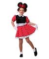 Carnavalskostuum Muizen meisjes jurkje