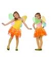 Meisjes vlinder carnaval kostuums
